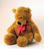Somber Teddy